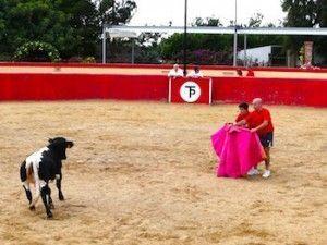 Capeas de vaquillas en Madrid